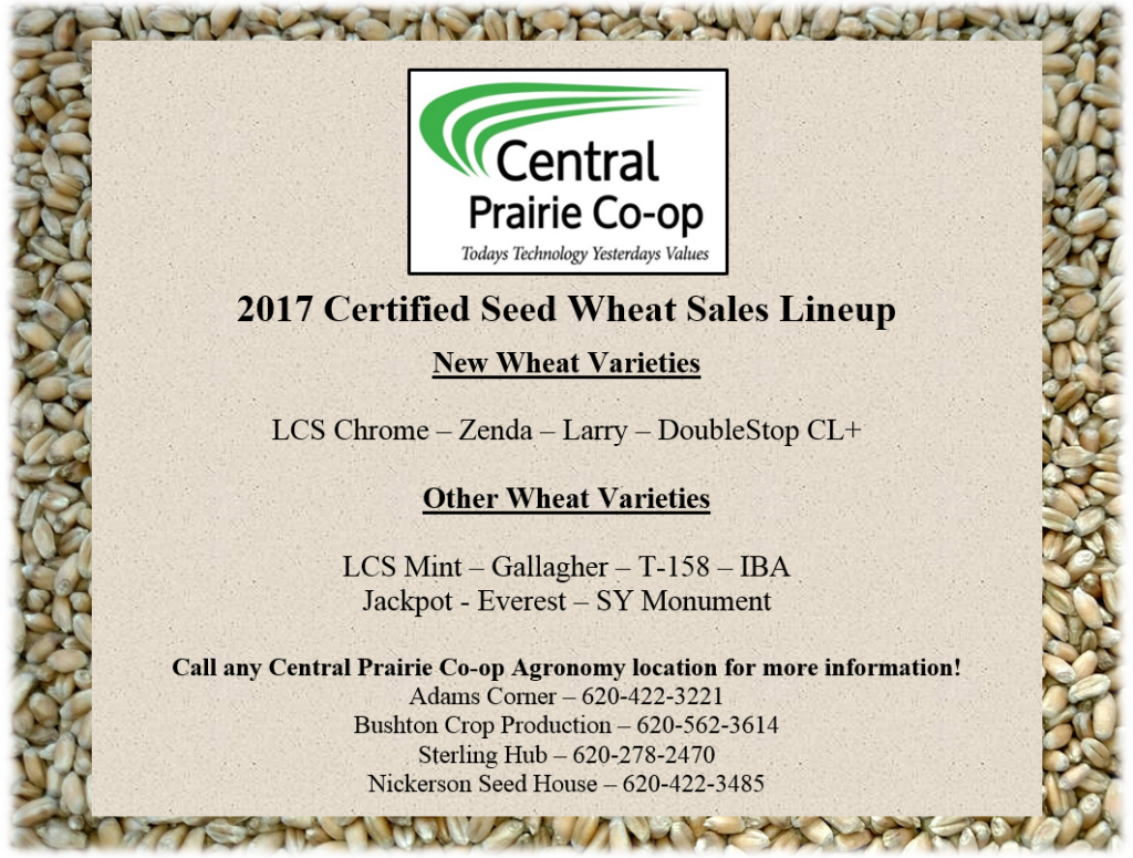 2017 Seed Wheat Flyer