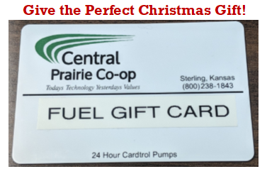 Fuel Gift Card Picture with Christmas